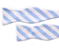 White Blue Bow Tie