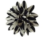Black and White Striped Carnation_Lapel Pin